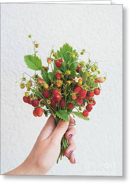 Wild Strawberries Greeting Card by Viktor Pravdica