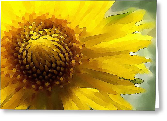 Wild Sunflower Up Close Greeting Card