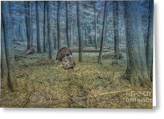 Wild Turkeys In Forest Version Two Greeting Card