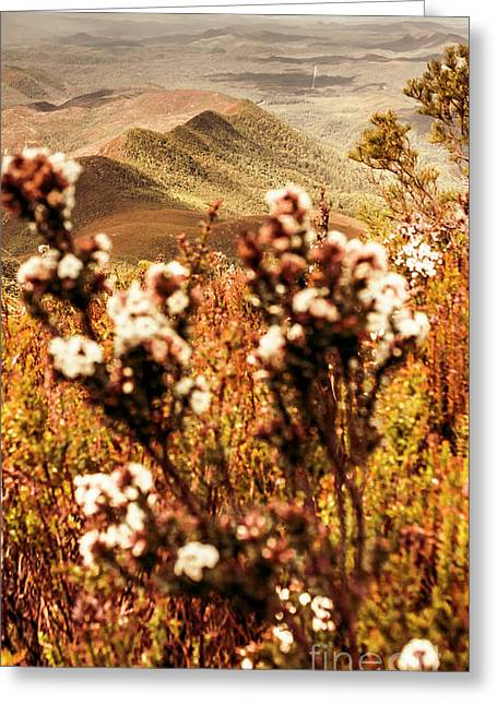Wild West Mountain View Greeting Card