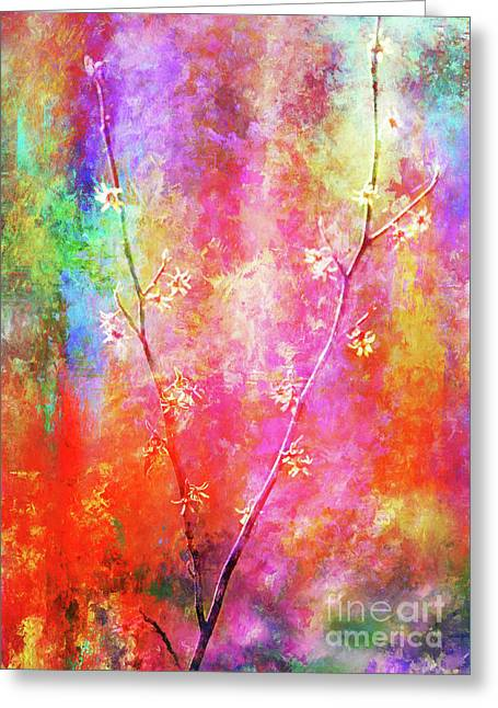 Wild, Wild, Witch Hazel Greeting Card