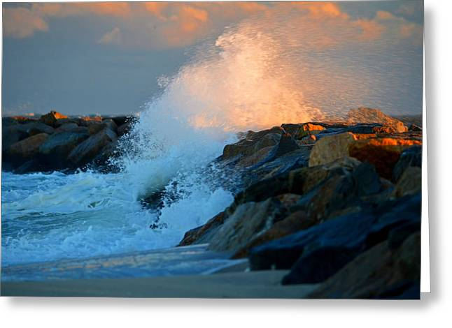 Wild Winter Morning - Cape Cod Bay Greeting Card by Dianne Cowen