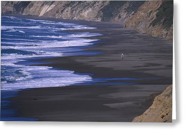 Wildcat Beach - Point Reyes Greeting Card by Soli Deo Gloria Wilderness And Wildlife Photography