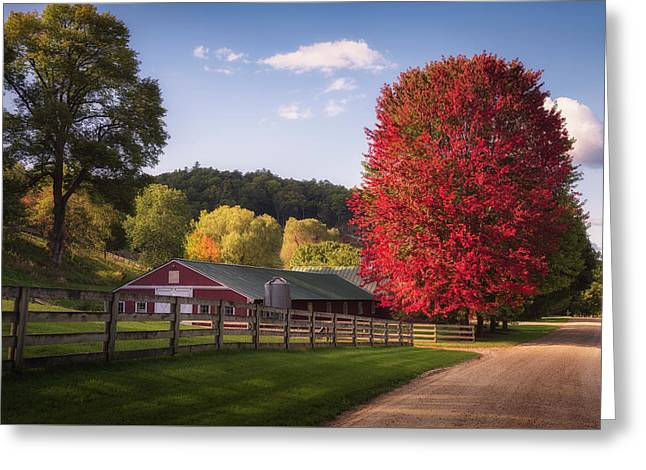 Wildcat Hollow Farm Greeting Card