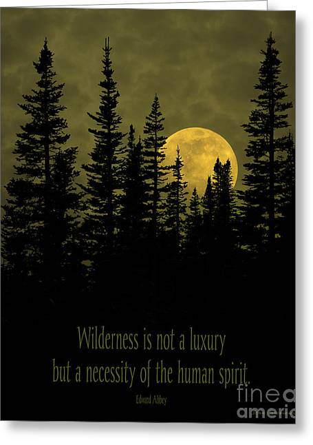 Wilderness Is Not A Luxury Greeting Card
