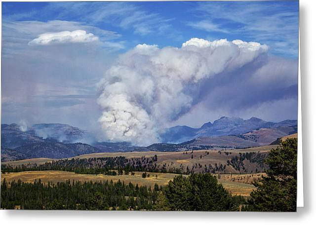 Wildfires In Yellowstone Greeting Card