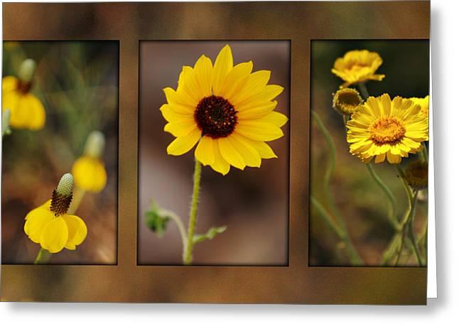 Wildflower 3 Greeting Card by Jill Reger