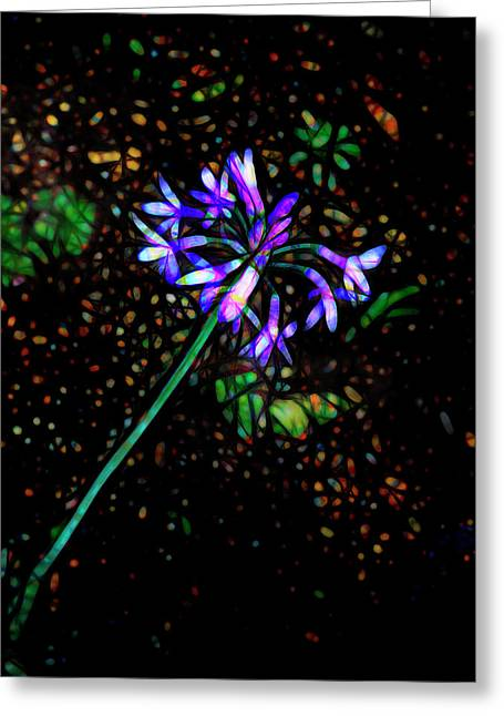 Greeting Card featuring the photograph Wildflower by Ann Powell