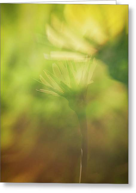 Wildflower..double Exposure Greeting Card