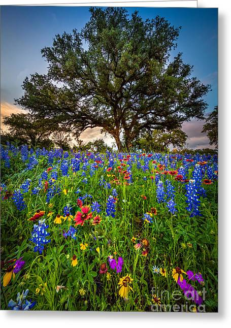 Wildflower Tree Greeting Card