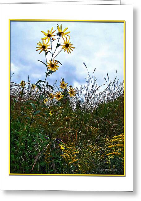Greeting Card featuring the photograph Wildflowers And Mentor Marsh by Joan  Minchak