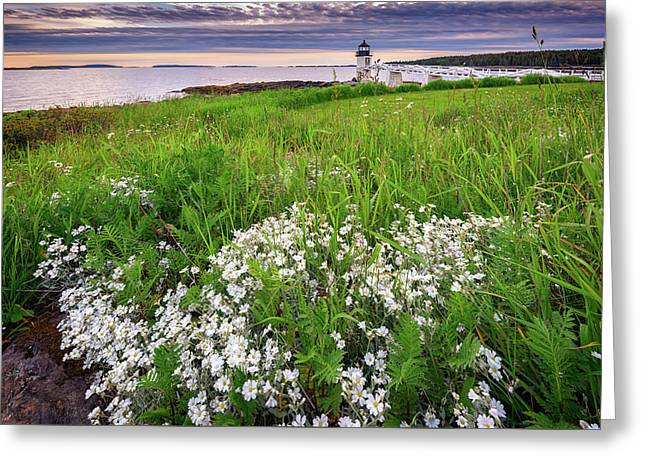 Wildflowers At Marshall Point Greeting Card by Rick Berk