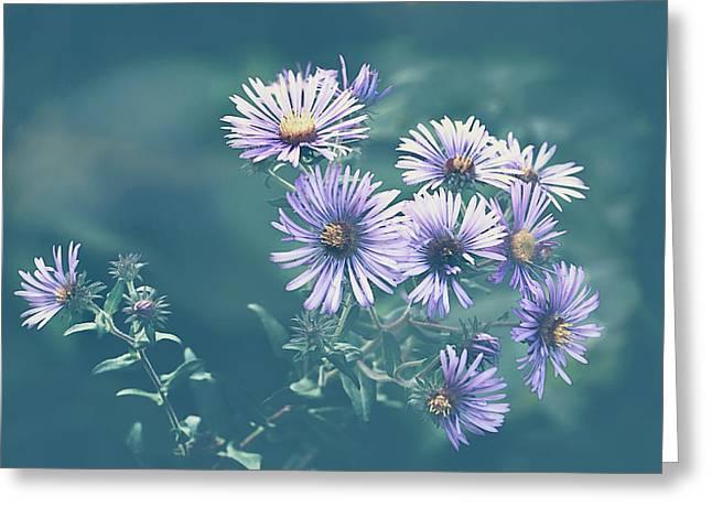 Wildflowers Greeting Card