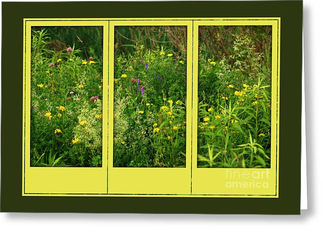 Wildflowers Through A Window Greeting Card