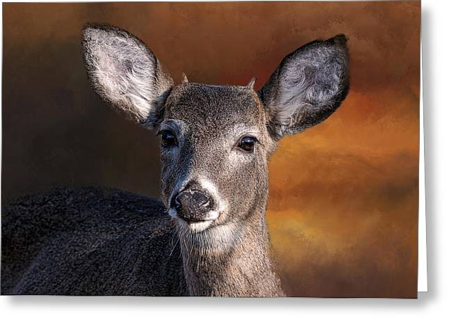 Wildlife - Button Buck - Deer Greeting Card by SharaLee Art