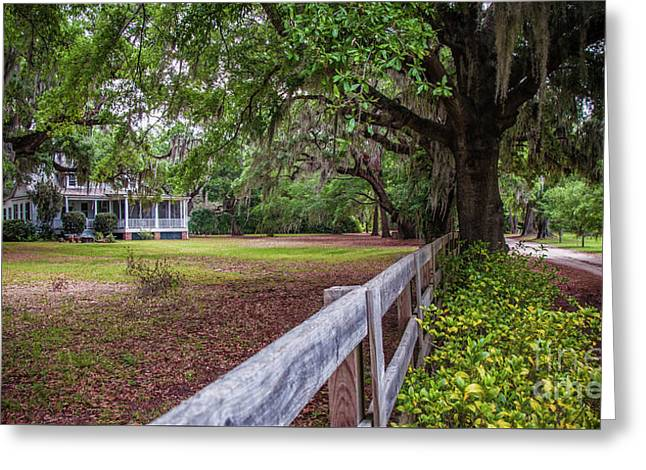 Will Town Bluff Plantation Home IIi Greeting Card