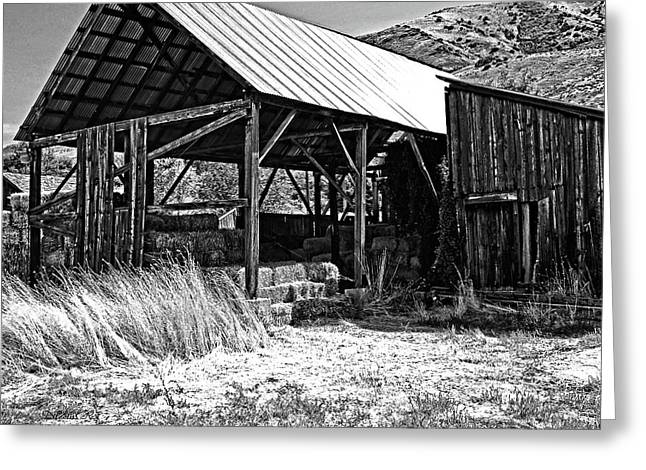 Willard Hay Shed Bw Greeting Card
