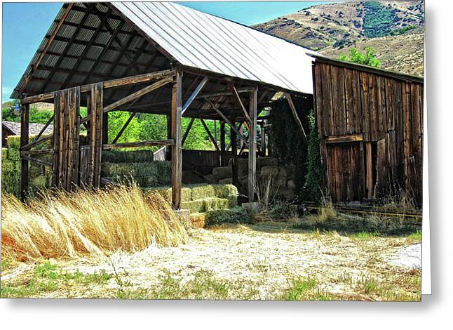 Willard Hay Shed Greeting Card