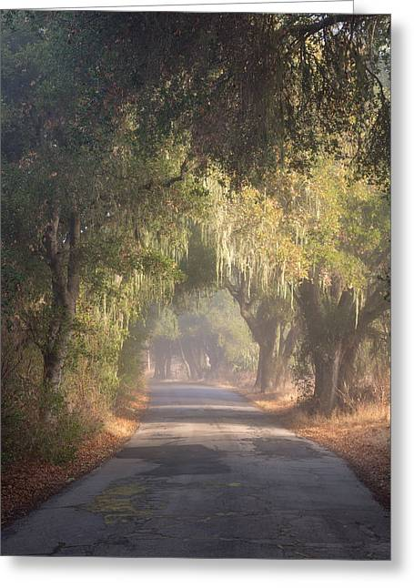 Willow Road Greeting Card by Joseph Smith