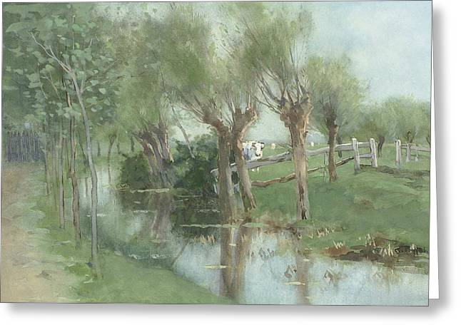 Willows In A Ditch Greeting Card