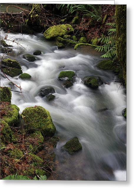 Greeting Card featuring the photograph Wilson Creek #15 by Ben Upham III