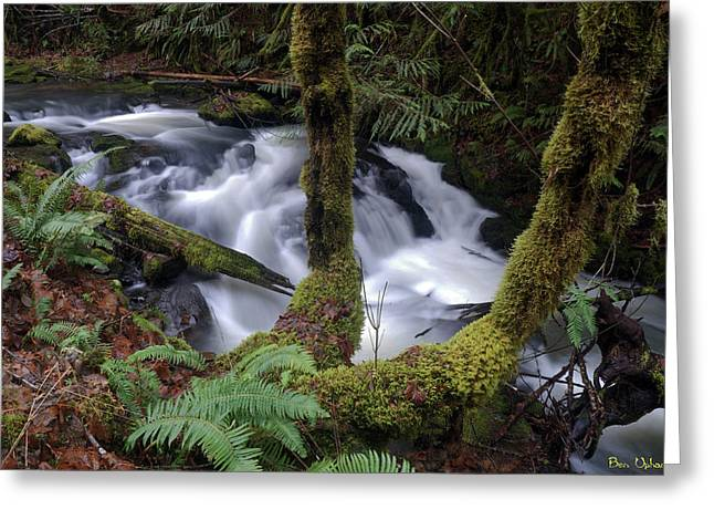 Greeting Card featuring the photograph Wilson Creek #16 by Ben Upham III
