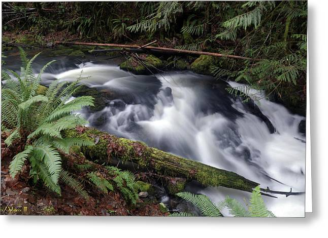 Greeting Card featuring the photograph Wilson Creek #19 by Ben Upham III