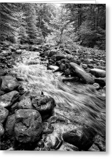 Greeting Card featuring the photograph Wilson Creek 2 by Alan Raasch