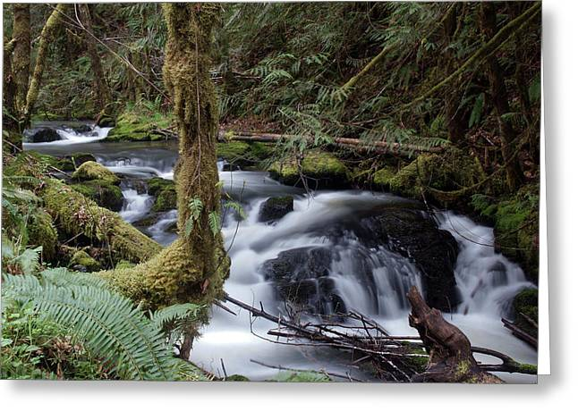 Greeting Card featuring the photograph Wilson Creek #25 by Ben Upham III