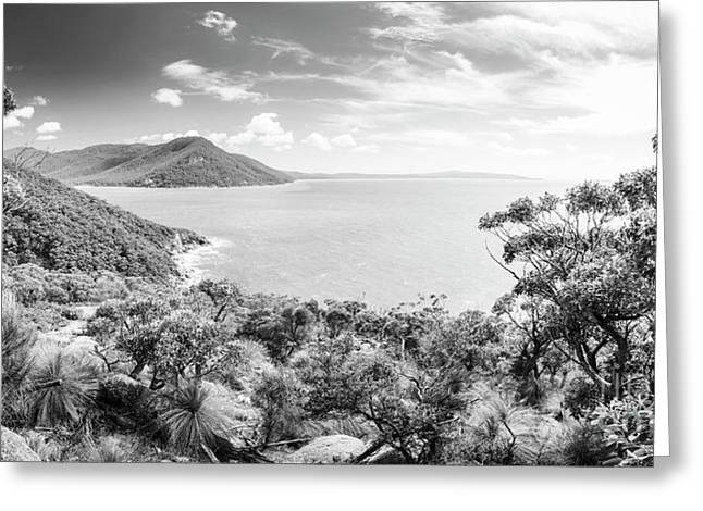 Wilsons Promontory Panorama Black And White Greeting Card