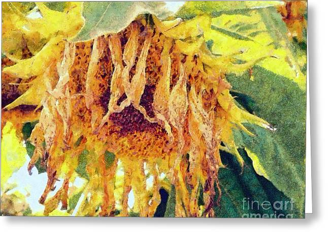 Wilted Sunflower - What A Day Greeting Card by Janine Riley