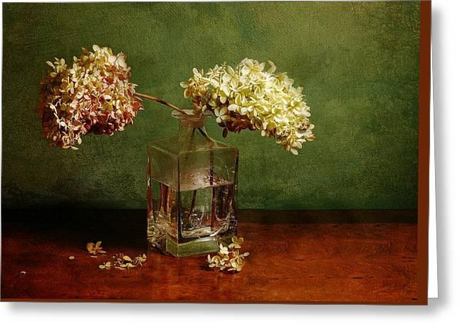 Wilting Hydrangeas Greeting Card by Diana Angstadt