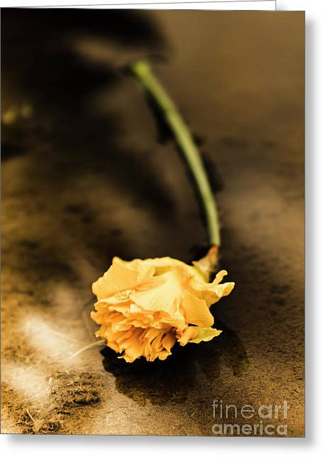 Wilting Puddle Flower Greeting Card