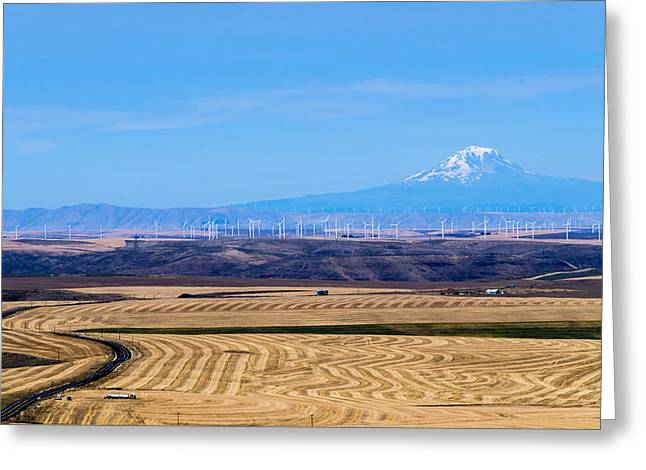 Wind And Wheat Greeting Card