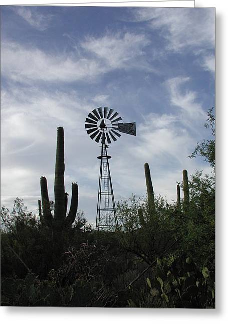 Greeting Card featuring the photograph Wind At Work by Nancy Taylor
