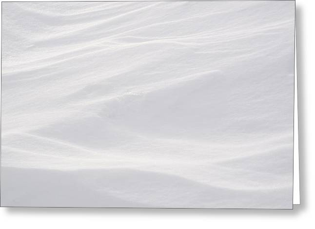 Wind Carved Snow Greeting Card