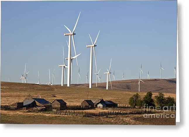 Wind Farm And Old Homestead Greeting Card by Inga Spence