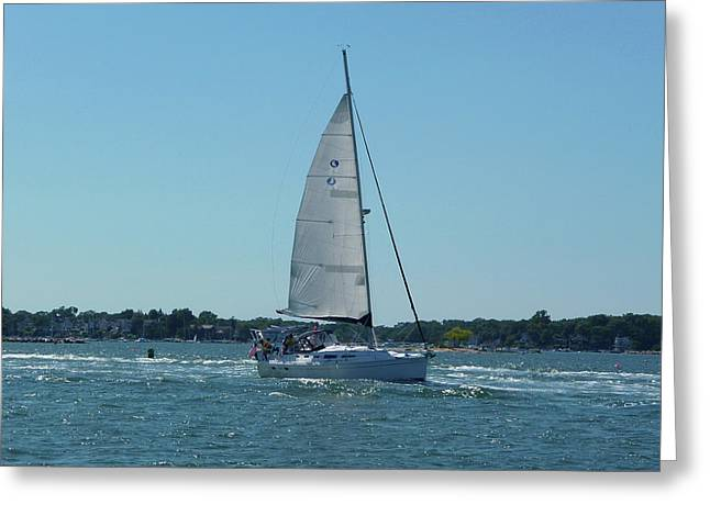 Wind In The Sails Greeting Card by Margie Avellino