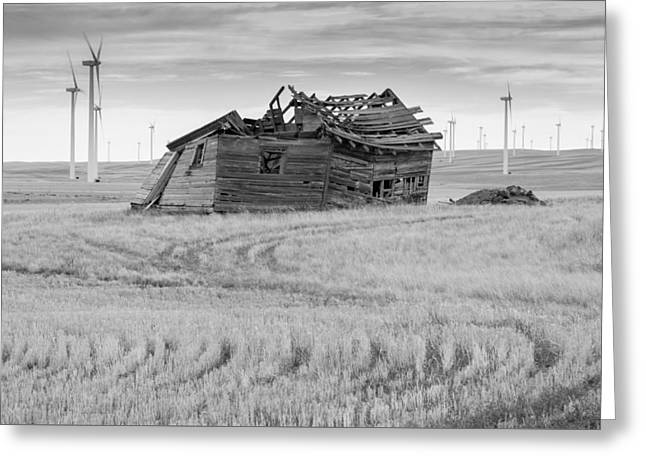 Greeting Card featuring the photograph Wind On The Plains by Fran Riley
