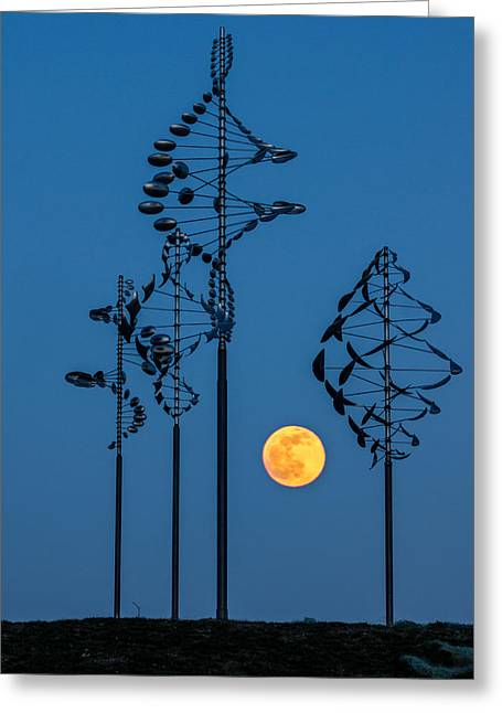 Wind Sculptures At Wilkeson Pointe Greeting Card