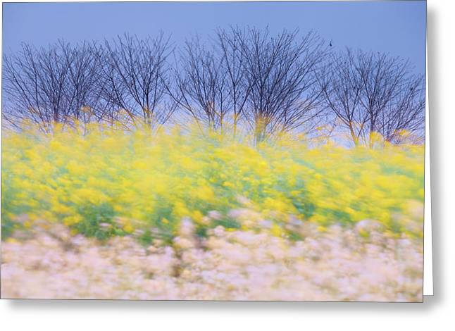 Wind Strokes Greeting Card
