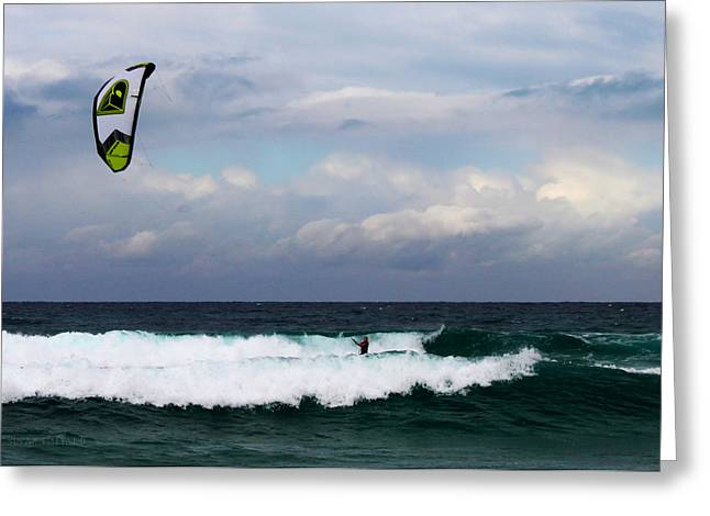 Wind Surfing Surfer's Paradise Greeting Card by Susan Vineyard