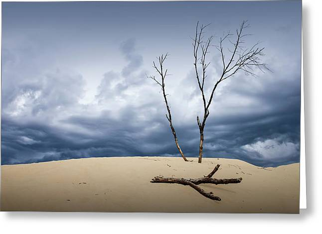 Wind Swept Clouds Over The Dunes Greeting Card by Randall Nyhof