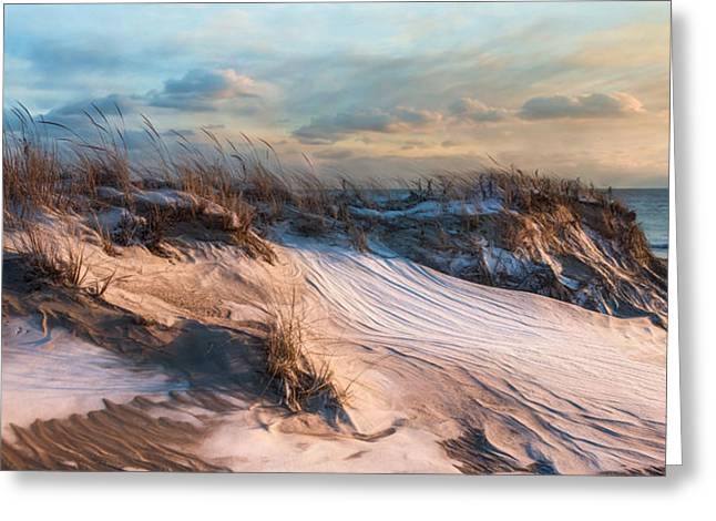 Greeting Card featuring the photograph Wind Swept by Robin-lee Vieira