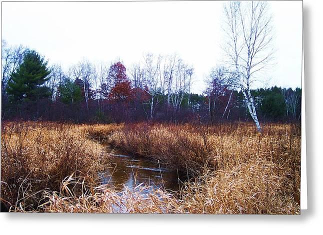 Winding Creek 1 Greeting Card