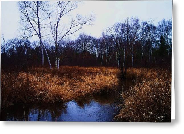 Winding Creek 2 Greeting Card by Anna Villarreal Garbis