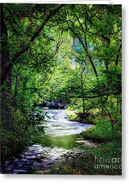 Winding Creek At Chickasaw National Recreation Area In Vertical Greeting Card