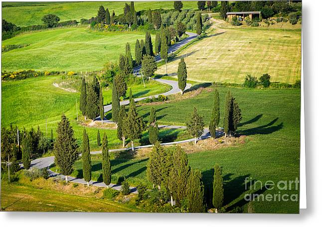 Greeting Card featuring the photograph Winding Cypress Lined Road Of Monticchiello by IPics Photography