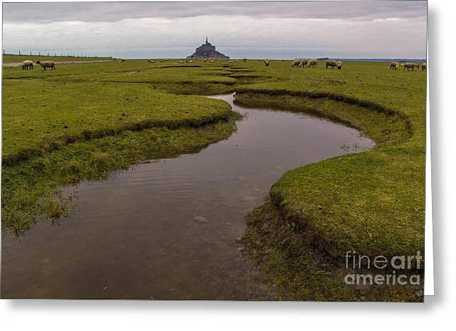 Winding In The Mont Saint-michel Bay Greeting Card