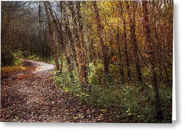Winding Path Greeting Card by Debra and Dave Vanderlaan